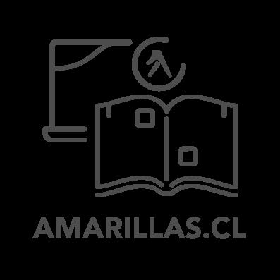 iconos productos home v2_AMARILLAS.CL.png